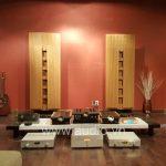 Pre-Amplifier YBA Passion PRE 550 (1)